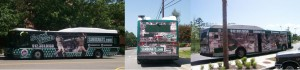 bus-wrap---sand-gnats-2012