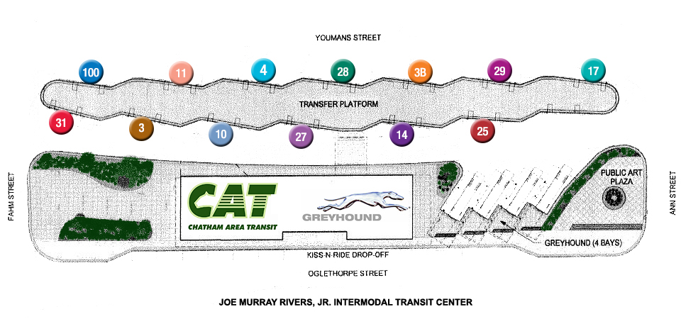 cat services chatham area transit cat cat services chatham area transit cat